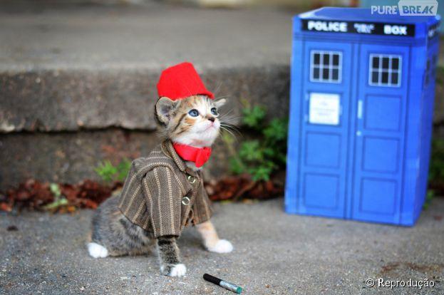 """<p>Fantasia inspirada em """"Doctor Who"""", a série de TV que os geeks amam</p>"""