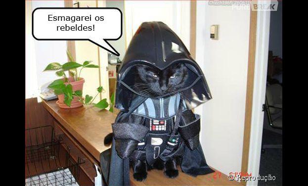 <p>Cat Vader, a versão felina do Darth Vader</p>