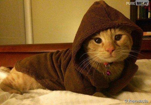"""<p>Os donos desse gatinho decidiram colocar uma capa igual dos Jedis de """"Star Wars"""". Só falta o sabre de luz</p>"""