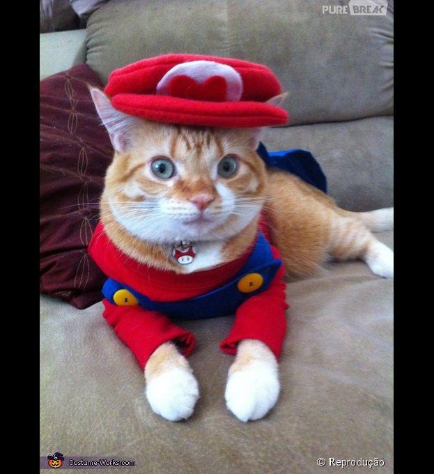 <p>Até o Mario virou fantasia para o animal de estimação</p>