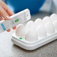 Gadget avisa se ainda tem ovos na geladeira, mas não avisa se há neurônios no seu cérebro