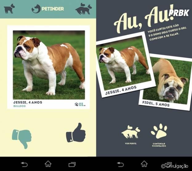 Melhores aplicativos e redes sociais para o seu pet: Petinder