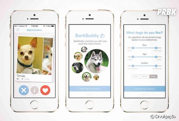 Melhores aplicativos e redes sociais para o seu pet: BarkBuddy