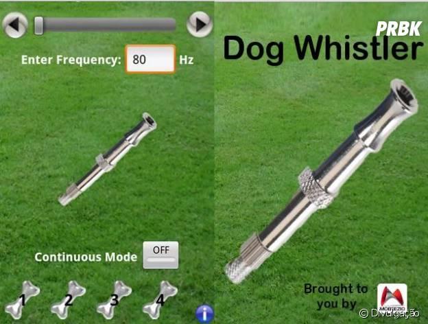 Melhores aplicativos e redes sociais para o seu pet: Dog Whistler