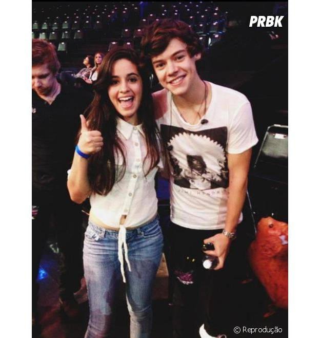 Camila Cabello tieta Harry Styles em show da banda One Direction