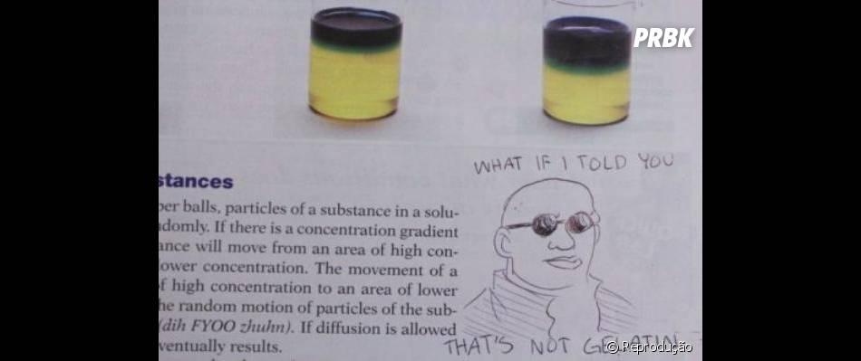 Fazer piadinhas no livro de ciências, quem nunca?
