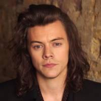 """Harry Styles, do One Direction, tem reação hilária quando sugerem que """"Perfect"""" é sobre Taylor Swift"""