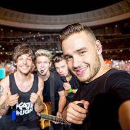 One Direction ganha homenagem de fãs com hashtag Thanks1DForAnAmazing2015 no Twitter!