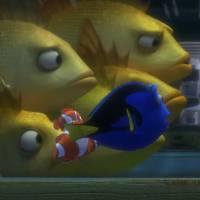 """De """"Procurando Dory"""": em novo trailer, Nemo e Marlin ajudam a peixinha a encontrar sua família!"""