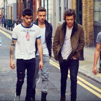 One Direction no Brasil: Descubra as exigências dos rapazes para shows no país