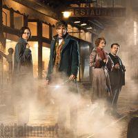 """De """"Animais Fantásticos e Onde Habitam"""": J. K. Rowling anuncia cinco filmes para franquia"""