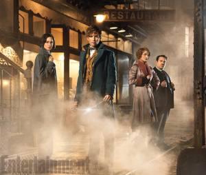 """""""Animais Fantásticos e Onde Habitam"""", de J. K. Rowling, foi pensado como trilogia, mas terá história contada em cinco filmes"""