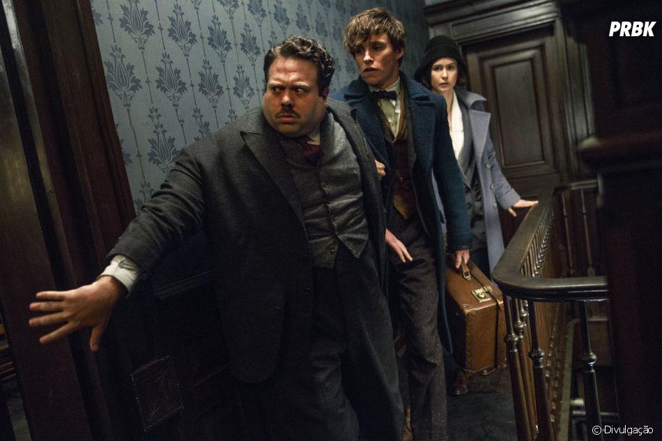 """""""Animais Fantásticos e Onde Habitam"""" é a nova obra de J.K. Rowling, autora de """"Harry Potter"""""""