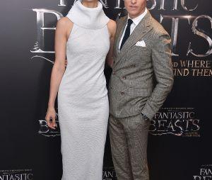 "Eddie Redmayne e Katherine Waterston marcaram presença na première de ""Animais Fantásticos e Onde Habitam"""