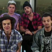 One Direction anuncia nova turnê para 2015, após shows no Brasil