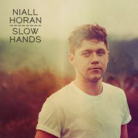 "Niall Horan lança ""Slow Hands"" e surpreende fãs com pegada sexy do novo single!"