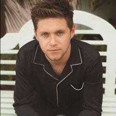 Niall Horan afirma que nunca alcançará a fama do One Direction na carreira solo