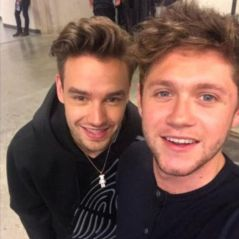 Liam Payne e Niall Horan superam One Direction e têm músicas mais tocadas nas rádios americanas!