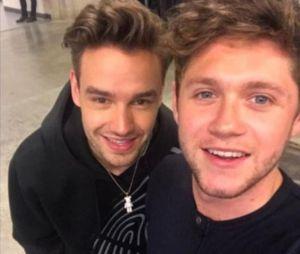Niall Horan e Liam Payne superam sucesso de One Direcion nas rádios americanas!