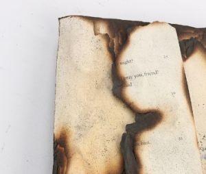 Livro queimado por Bella(Kristen Stewart) à venda no leilão!