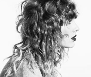 Com £52 milhões (aproximadamente R$223 milhões), Taylor Swift é a 2ª cantora mais rica de 2017