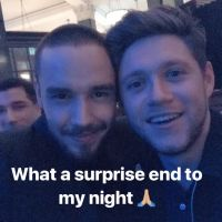 Niall Horan e Liam Payne se encontram na festa do Brit Awards 2018 e fãs surtam!