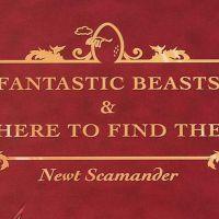 """Spin-off de """"Harry Potter"""" deve ter velho conhecido na direção"""