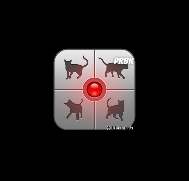 O tradutor Humano-Gato já existe e você mal pode esperar para experimentar