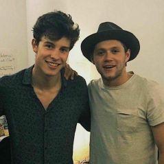 """Shawn Mendes confirma parceria com Niall Horan: """"Vai acontecer!"""""""