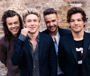 Os meninos do One Direction podem se reunir ainda esse ano, revela Liam Payne
