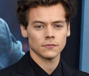 Harry Styles é o integrante do One Direction que Liam Payne menos vê