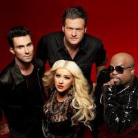 """""""The Voice USA"""": vem ver os concorrentes mais badalados desta edição do programa!"""
