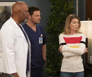 """Grey's Anatomy"":Meredith (Ellen Pompeo),Richard (James Pickens Jr.) e Alex (Justin Chambers) foram demitidos na 15ª temporada"