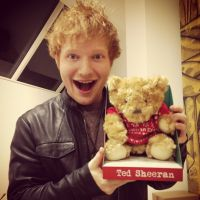 Ed Sheeran é o cantor mais fofo do mundo: Veja 5 fatos que provam essa teoria!