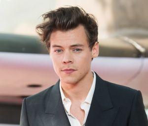 "Harry Styles deve passar com a ""Love on Tour"" pelo Brasil também"