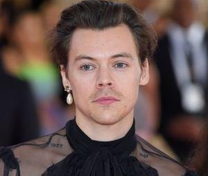 Quiz: será que você é tão aquariano quanto o Harry Styles?