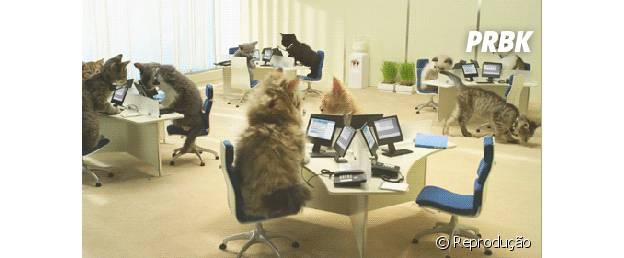 Profissão: O Tradutor é responsável por traduzir oralmente palestras, discursos, reuniões e videoconferências