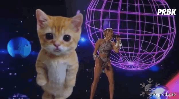 No AMA 2013 Miley Cyrus fez uma super apresentação, mas o que tinha a ver aquele gatinho ali atrás que roubou toda a atenção acompanhando a letra de Wrecking Ball?