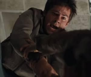 """Trailer """"Maze Runner 2"""""""