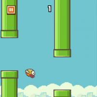 """Já ouviu falar de """"Flappy Bird"""", o jogo mais difícil e mais amado do momento?"""