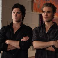 """De """"The Vampire Diaries"""" e os gatos das séries que você queria ver nos blocos!"""