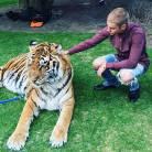 """Justin Bieber posa com tigre e ONG PETA critica o cantor: """"Teve sorte de não ter sido atacado"""""""