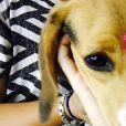 No Instagram de Miley Cyrus, tem mais fotos dos cachorros da cantora do que da diva em tapetes vermelhos