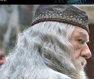 O professor de transfiguração de Hogwarts estará presente no segundo filme