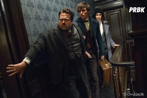 """""""Animais Fantásticos e Onde Habitam"""" é mais uma história de J.K. Rowling, autora de """"Harry Potter"""""""
