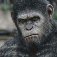 """Trailer de """"Planeta dos Macacos 2"""" mostra guerra entre primatas e humanos"""