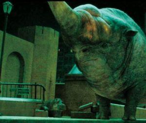 Erumpente: uma espécie de rinoceronte, seu couro repele a maioria dos feitiços e seu chifre é capaz de perfurar qualquer coisa, além de conter uma secreção fluida que explode a coisa ou a pessoa injetada