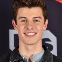"""Shawn Mendes em um filme? Cantor canadense é confirmado em musical """"Summer of Love"""""""