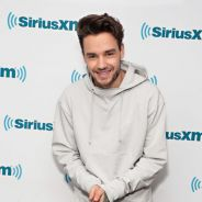Liam Payne, do One Direction, promete nu frontal caso seu single fique em 1º lugar! OMG!