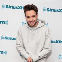 Liam Payne, do One Direction, promete nu frontal caso seu single fique em 1º lugar! OMG!